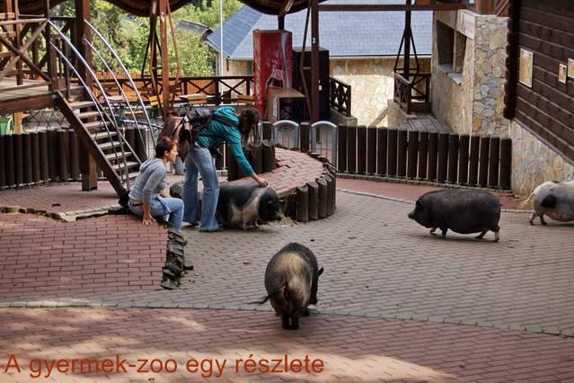 A bajmóci állatkert Gyermek-zoo